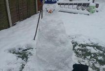 Bluenose snowmen