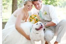 Wedding/Engagement / by Carly Mills