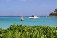 Caribbean / So many reasons to love the Caribbean. Check out the full Fathom guide: http://shar.es/Vk1X5 / by Fathom