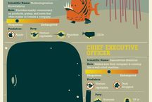 Infographics We Love / We get inspired by other infographics all the time. Here are some of our favorites. / by Lemonly