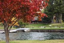 Fall at Flathead lake Lodge