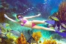 Snorkeling Playa del Carmen / Home to part of the world's second-largest barrier reef and some of the most pristine beaches in the Caribbean, Playa del Carmen offers no shortage of gorgeous snorkeling spots.