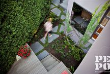 PEPO COURTYARD GARDENS / Courtyard garden oases designed and constructed by Pepo Botanic Design.