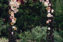 arcade flori