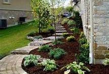 Landscaping & Backyard