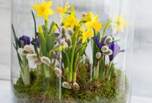 Deko Frühjahr