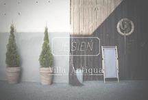 Jesień / jesień, ogród, villa antiuqa