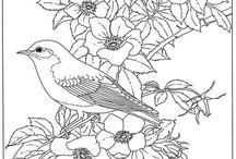 Birds outline