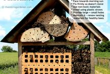 insect house diy