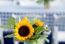 Gingham ~ Burlap ~ Sunflower / Country living