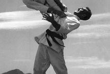 Brazilian Jiu-Jitsu / Martial Art