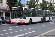 Bonn - Busse Mercedes-Benz O530G Citaro I + II (Baujahre 2001 - 2012) / Sie sehen hier eine Auswahl meiner Fotos, mehr davon finden Sie auf meiner Internetseite www.europa-fotografiert.de.