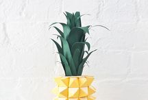 • Pineapples • /  Pineapples
