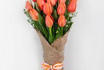 Tulips / Fav flowers