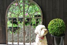 Garden Ideas / Ideas and inspiration for your garden.