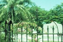 Keƴ West Cemetery / by Joann