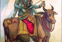 Miraculous Shani Vigrah In Shingnapur