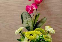 bunga untuk rumahmu / ayo..disini kamu bisa temukan koleksi rangkaian bunga meja yg bisa mempercantik tiap sudut rumah kita.