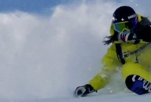Shred Life / All about skiing, snowboarding, and longboarding