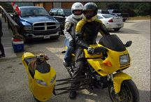 Sidecar Outfits