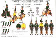 Anhalt napoleonics