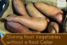 storing root vegetables without a root cellar