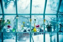 Trädgårdsinspiration / Bilder för att inspirera till den perfekta trädgården
