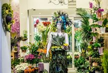 flower showcase  decoration deco ideas diy flowershop