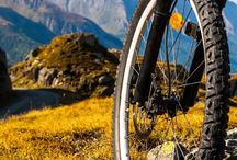 Bike / by Melissa Milan