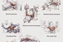 Exerciții piept