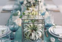 Air Plant Wedding Decor / Fantastic ways to use air plants in your wedding.