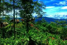 Kokoda trip