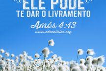 citações bíblicas