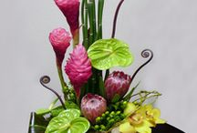 Exotic / Tropical / High Style / A collection of exotic flowers & designs for everyday, corporate and sympathy.