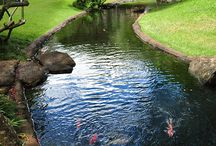 Koi Pond & Garden @ Gazuntai.com / My dream vision ..inspired by others inspirations