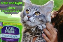 Pets and Products