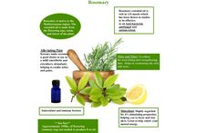 Aromatherapy Scents and Essential Oils / Diffuser Scents and Essential Oils
