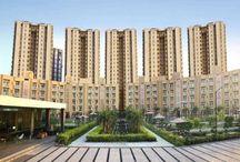 Rent in Vipul Gardens