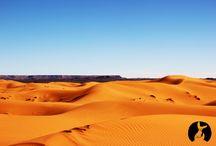 Travels Rutalsahara / Discover Morocco