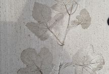 leaves in concrete
