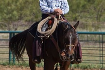 Tom Davis Horsemanship / Come Ride with Tom Davis Are you looking to advance your horse skills or just learn to be a better horseman/women? www.ColtTrainer.com
