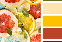 Color scheme fabric