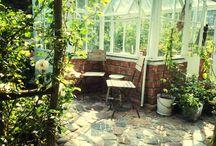 My garden / Trädgård växter njutning