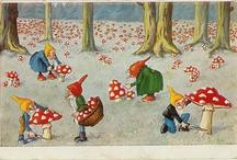 Gnomes & Mushrooms