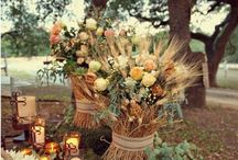 wedding / Tricia Napor and Michael Schaffer wedding inspiration board- October 31 2015