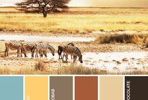 Barvy Afriky