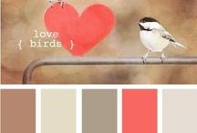 kedvenc színek