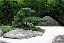 garden zen japan