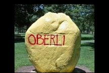 All Things Oberlin