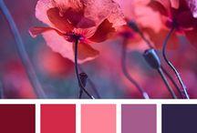 Paletas de colores